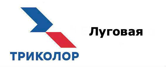 Триколор Луговая